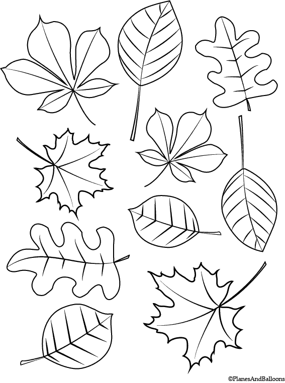 Fall leaves blowing coloring pages ~ Fall Coloring Pages For Young Children FREE Instant Download
