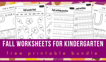 fall worksheets kindergarten