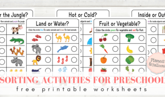Colorful sorting worksheets for preschool to teach concepts beyond color and shape
