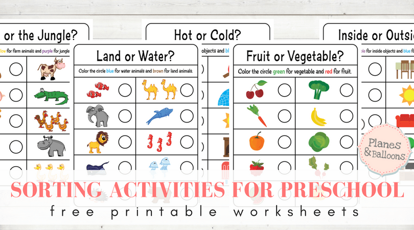 Sorting Worksheets For Preschool