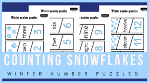Counting snowflakes puzzles for growing number sense