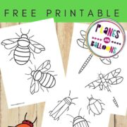 Bugs and beetles coloring pages