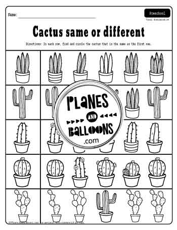 cactus theme same or different worksheets