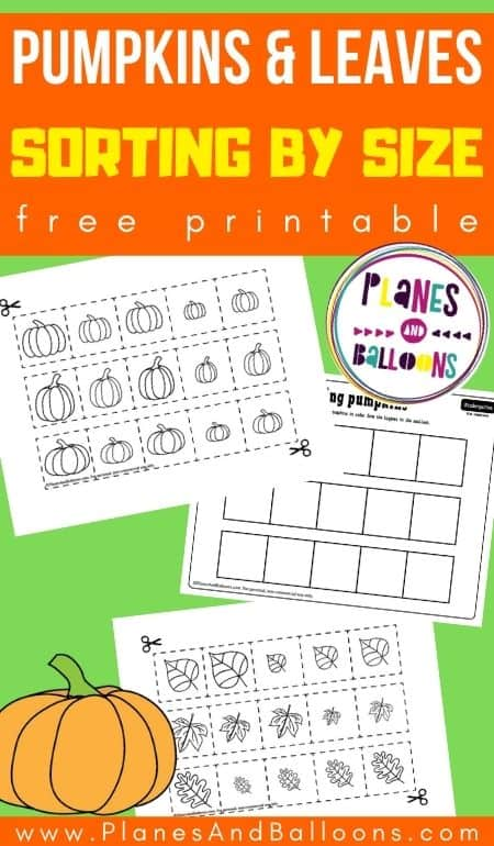 Sorting pumpkins by size worksheets for kindergarten - three worksheets on green background
